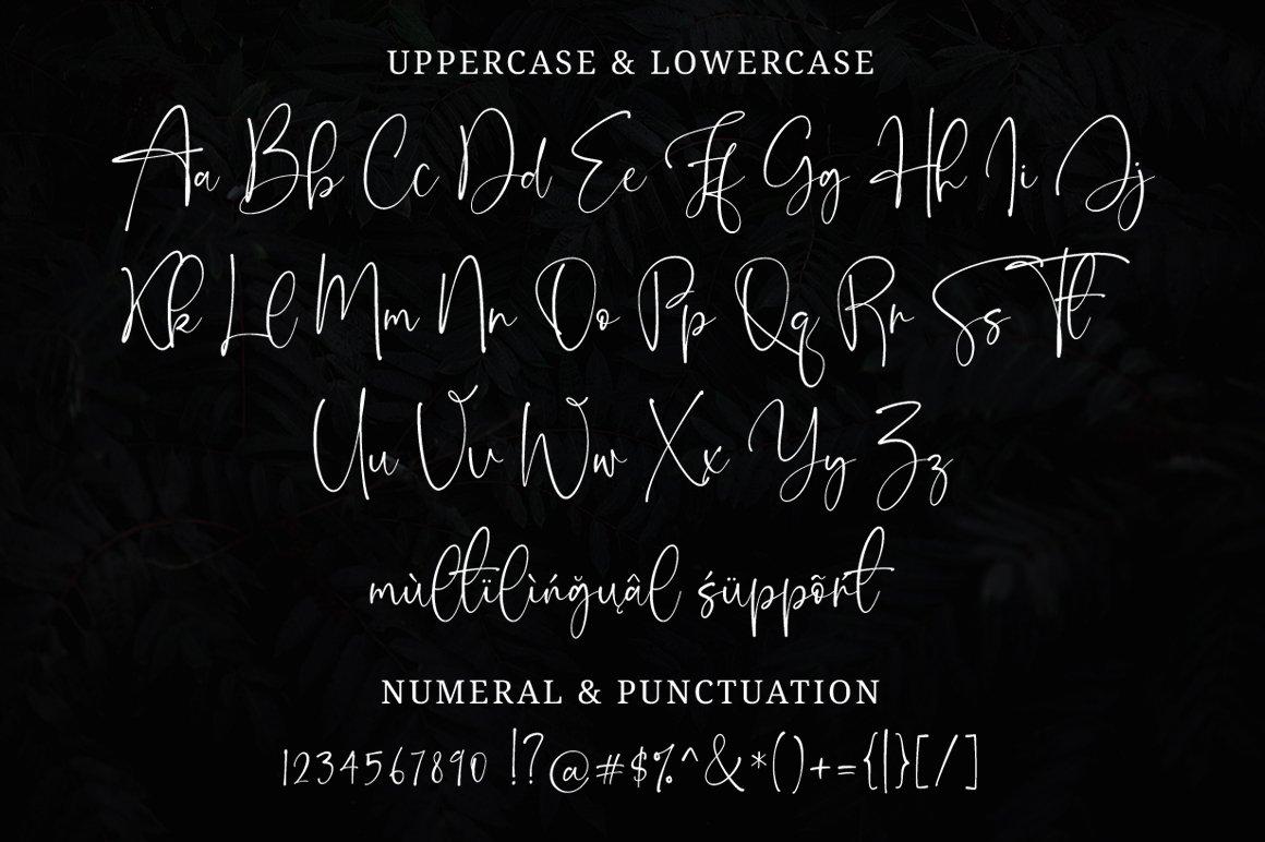 Onesty Signature Font-3