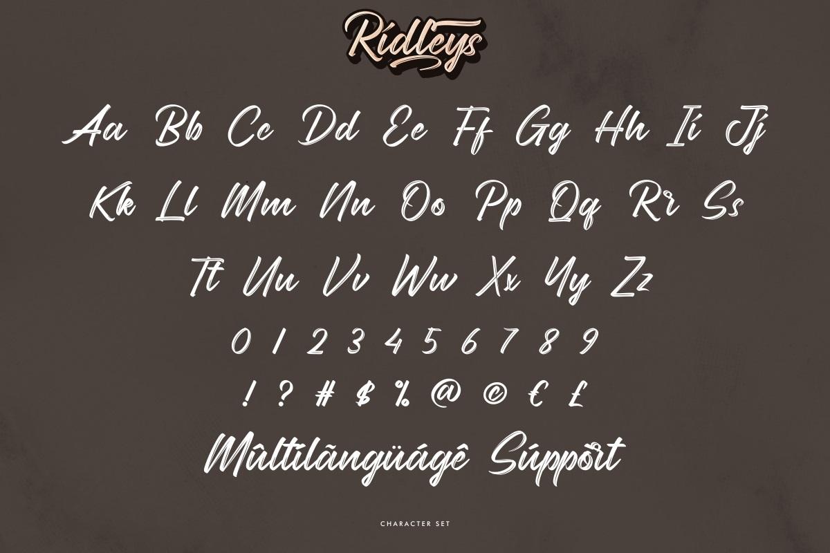 Ridleys Font-3