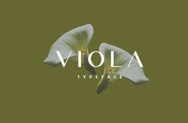 Viola Typeface