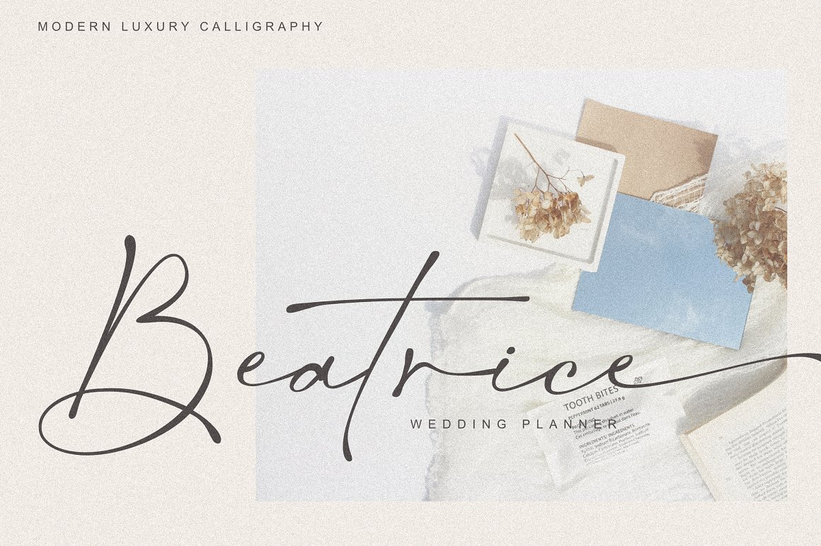 Salty Feathers Font-3