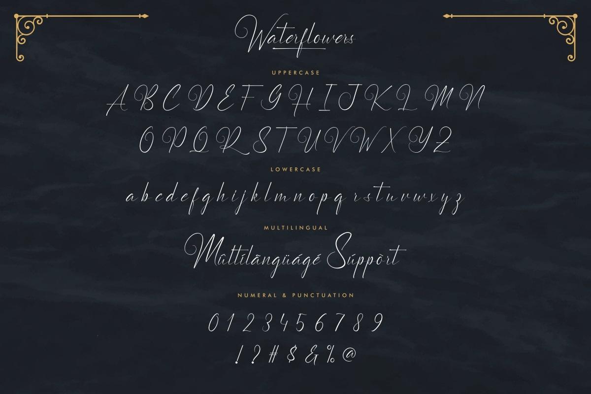 Waterflowers Font-3