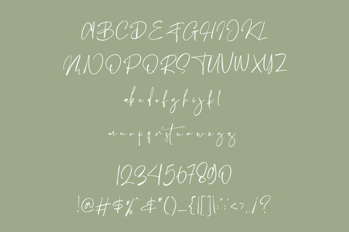 Ballison Font-3
