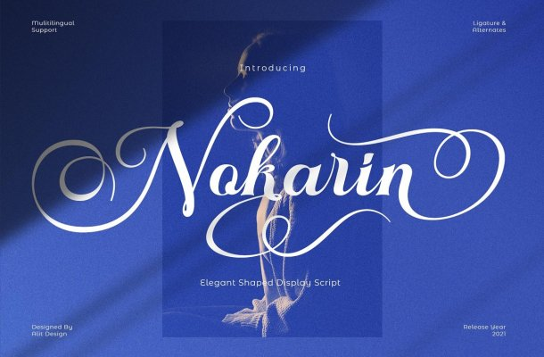 Nokarin Font