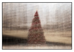 The Toronto City Hall Christmas tree photographed in the round. © Stephen D'Agostino. An example of photo impressionism.