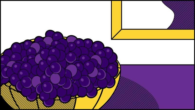 Illustrazione uva pop art