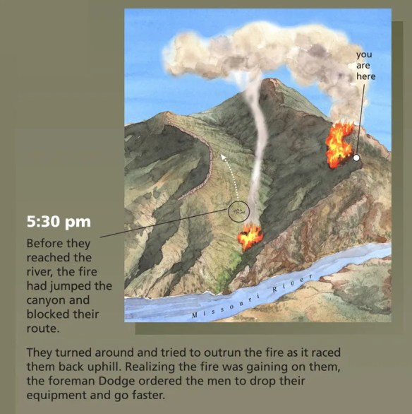 As the men were heading down, the fire jumped the creek. Suddenly the men found themselves trapped in the canyon, with no way to get to the river and to safety. Fires naturally burn uphill, but the only way out was up, so the men turned and tried to outrun the fire as it raged behind them.