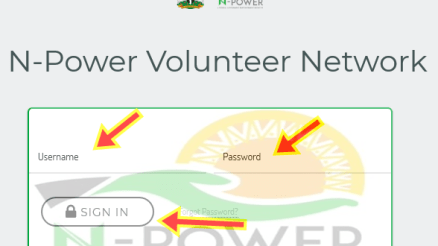 What Next for Npower PPA Appointment After N-Power BVN Update?
