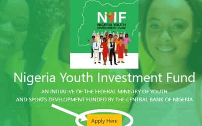 Requirement For Applying Nigeria Youth Investment Fund of N75Bn | Apply for NYIF