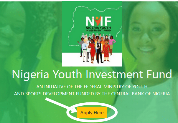 Requirement For Applying Nigeria Youth Investment Fund