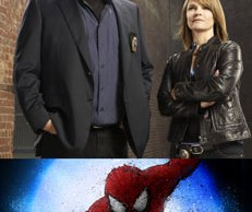 Law-&-Order-CI-Spider-man