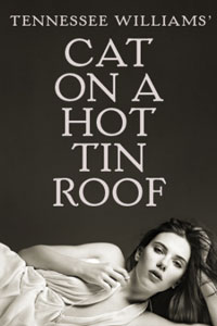 cat-hot-tin-roof-scarlett-johansson