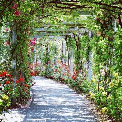 wedding venues in florida - Ellies Garden Jax 4