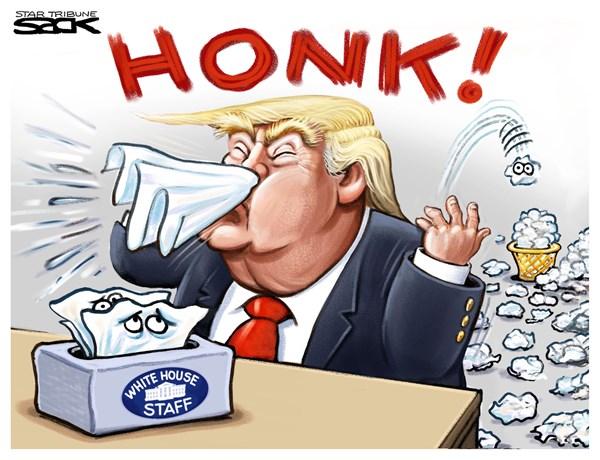 Image result for trump political cartoons