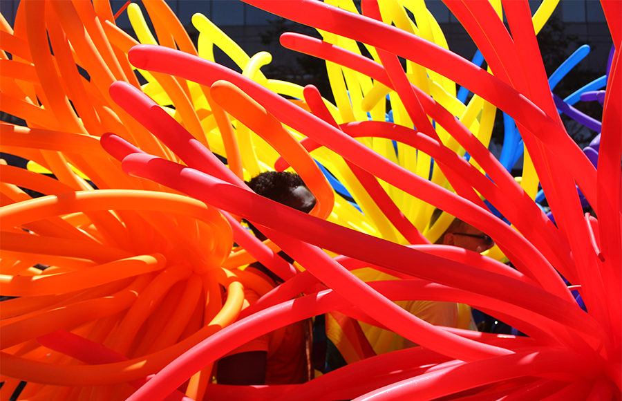 photo essay love is colorful the daily californian photo essay love is colorful