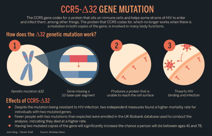 Gene mutation made with CRISPR leads to higher mortality rates, UC Berkeley study finds