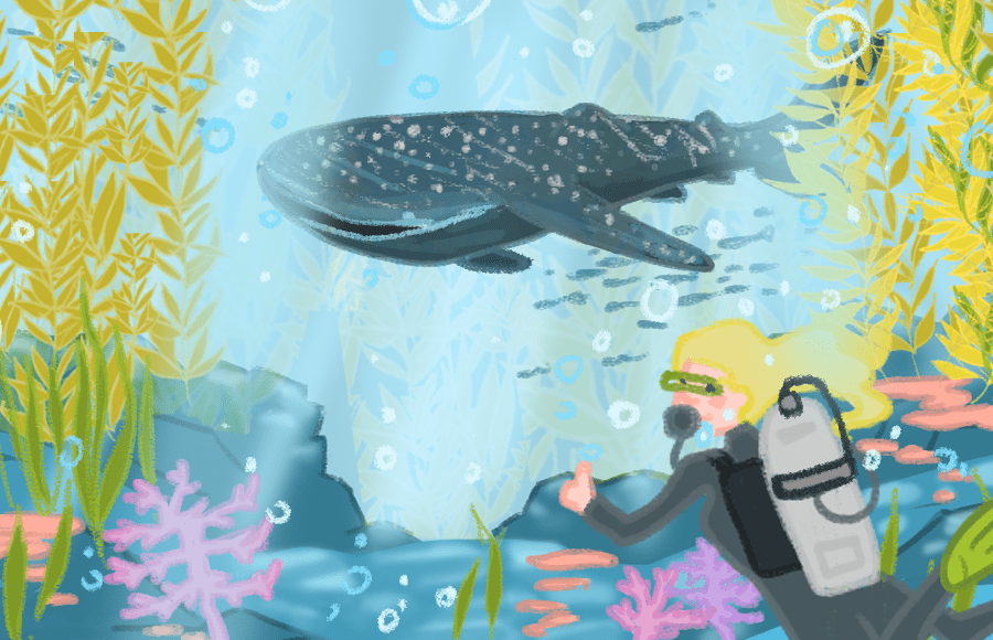 Illustration of a diver and a whale shark