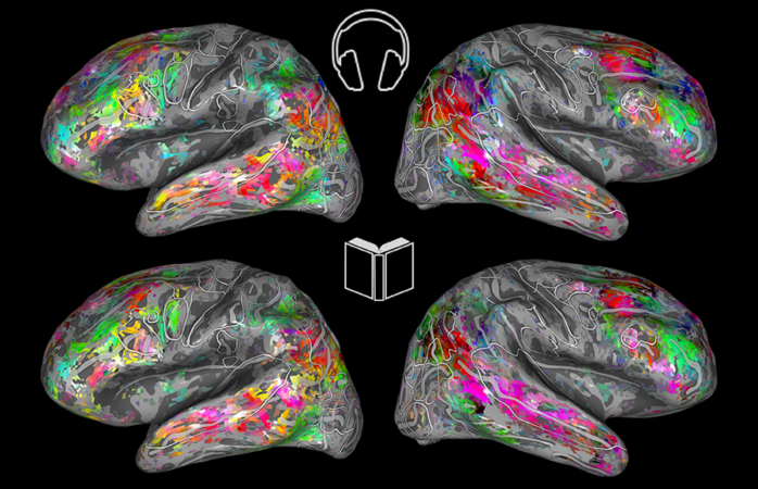 UC Berkeley study finds human brains similarly stimulated by reading, listening
