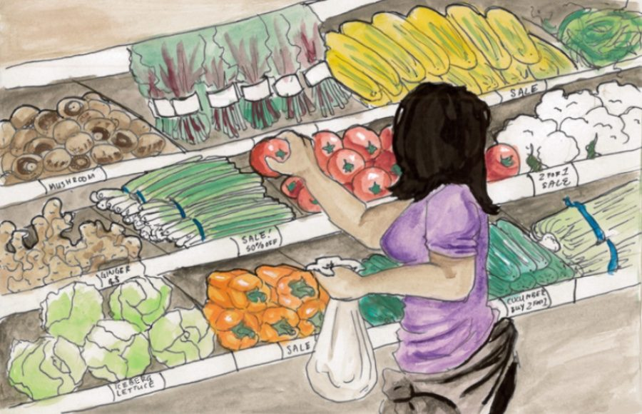 Illustration of person shopping for groceries.