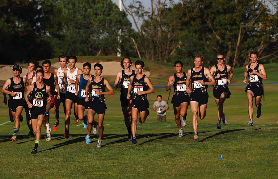 Photo of Cal Cross Country