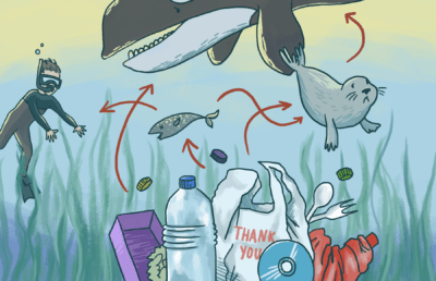 Illustration of distressed-looking sea animals caught in a food chain involving plastic pollution in the ocean