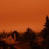 Photo of orange sky over residential Berkeley