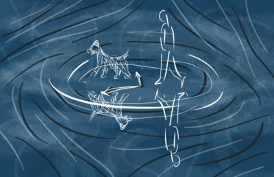 Illustration of a water body's surface, depicting ripples that begin to make out the image of a person walking behind their dog.