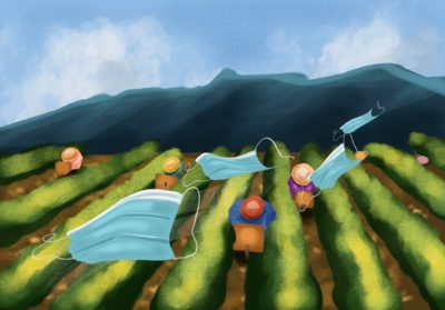 Illustration of farm workers bent over in a field, while masks float above them in the air.