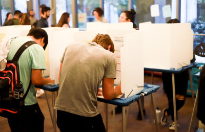 Photo of individuals casting their vote