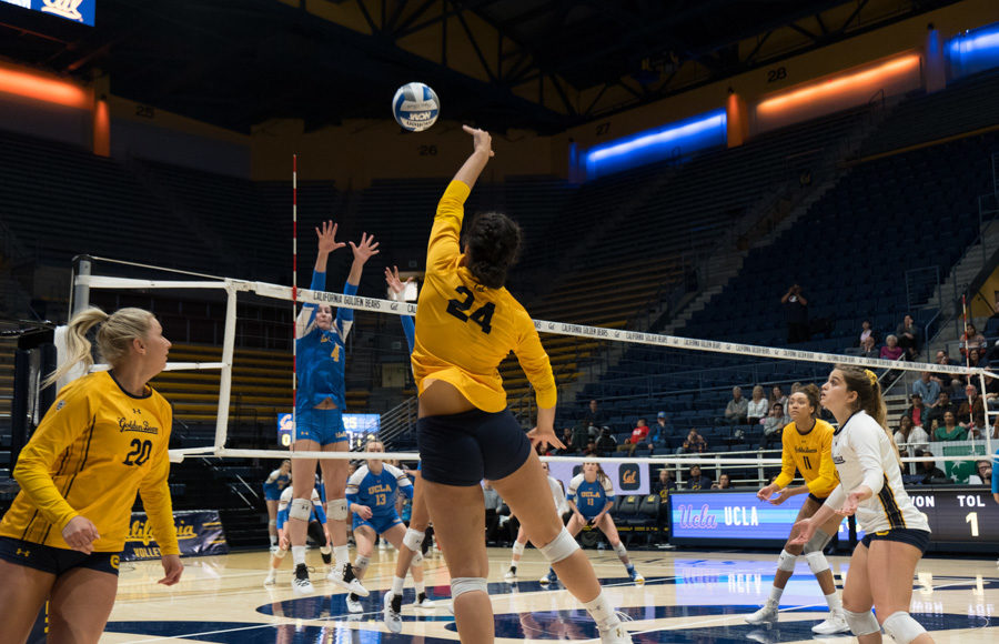 Photo of Cal Volleyball