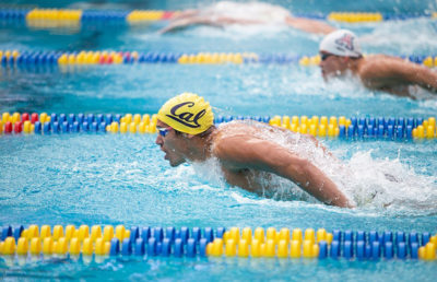 Photo of Cal Men's Swimming
