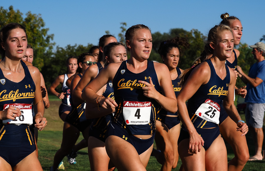Image of female Cross Country runners