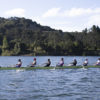 Photo of Cal Men's Rowing