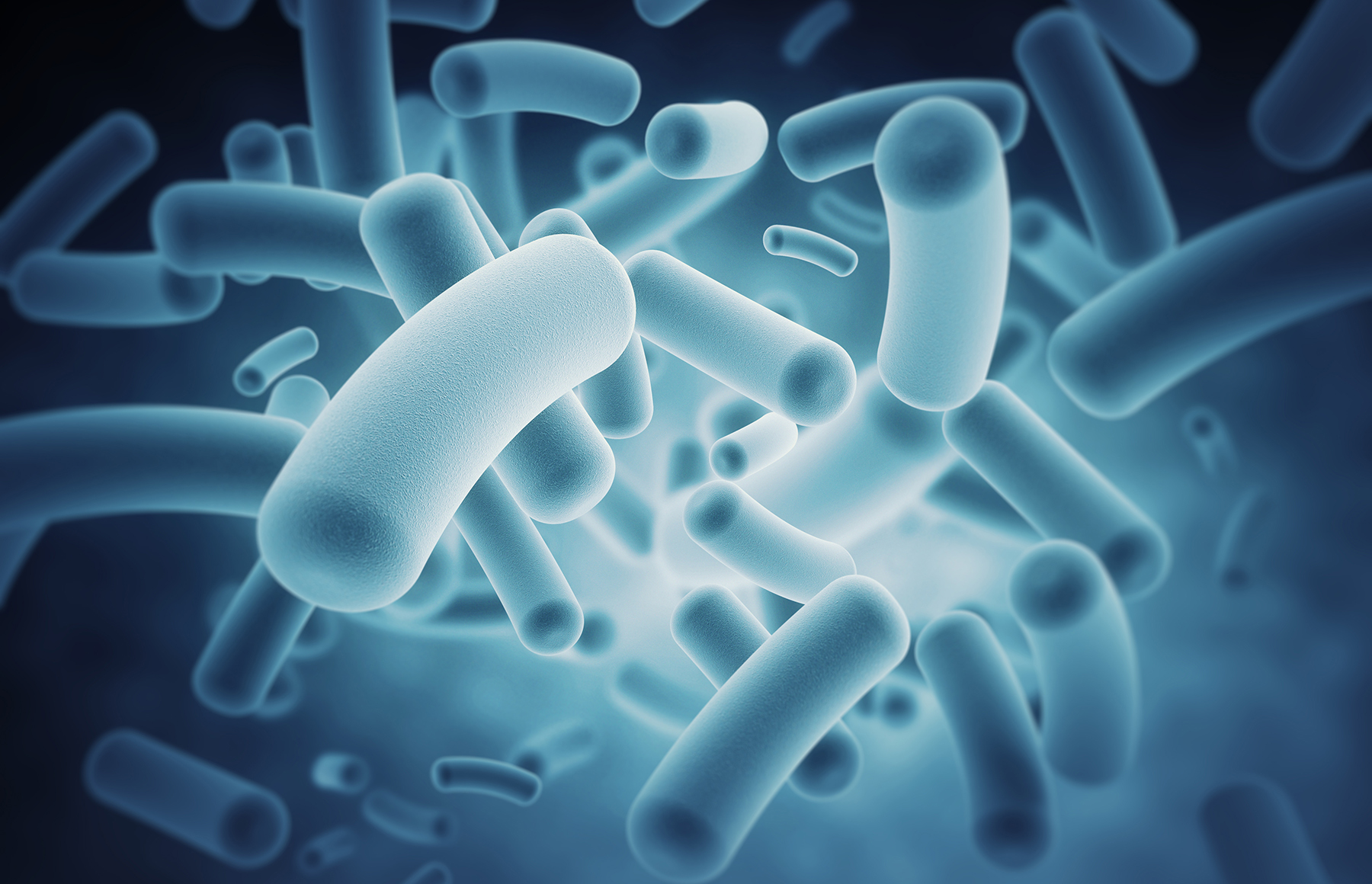 Listen to your gut: Importance of the microbiome