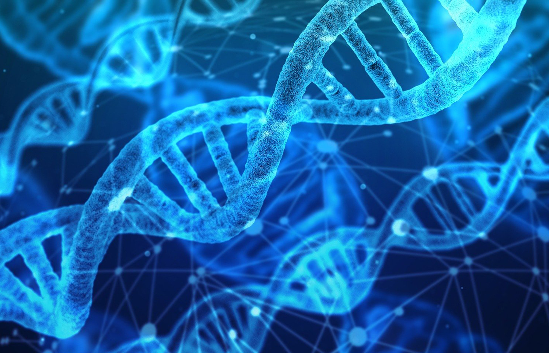UC Berkeley researchers discover unique DNA sequence with potential to combat climate change