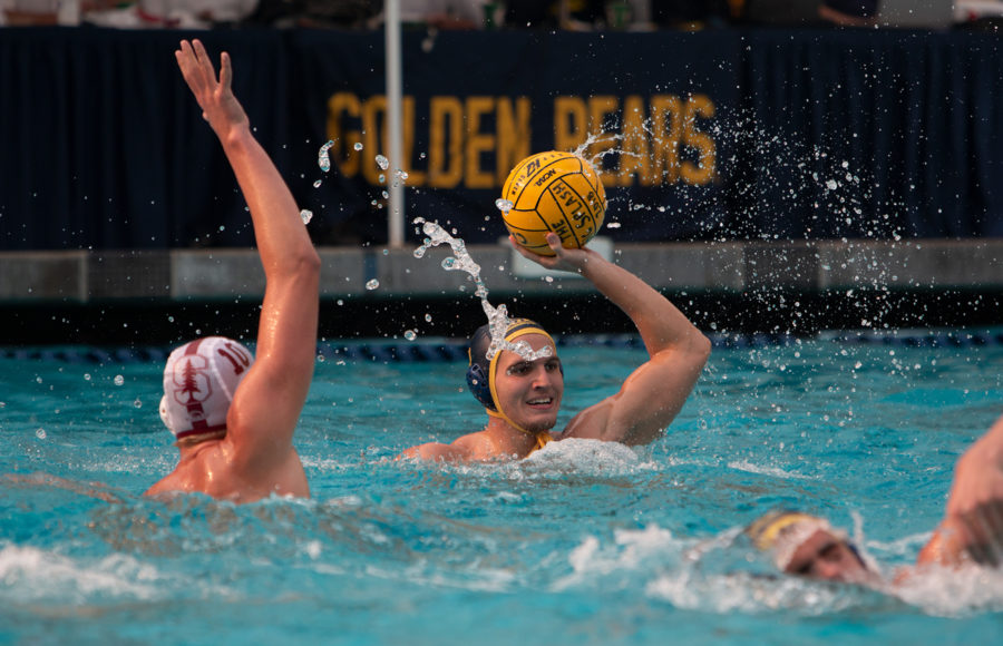 photo of a UC Berkeley men's Water Polo player