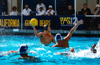 photo of men's water polo