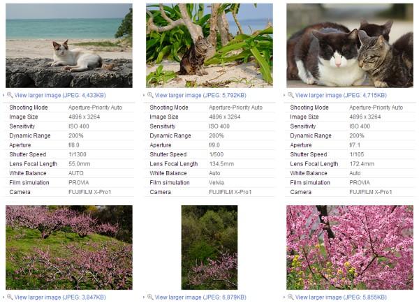 fujinon_xf55-200_lens_sample_images