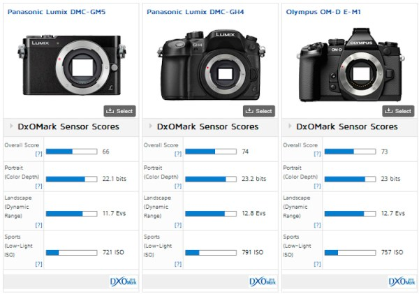 Panasonic GM5 vs Panasonic GH4 vs Olympus OMD EM1