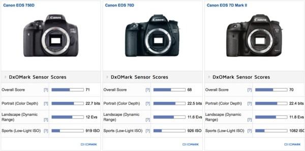 canon-eos-rebel-t6s-and-t6i-sensor-reviews-comparison