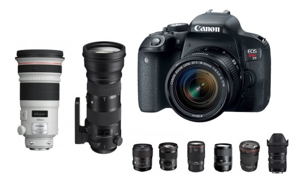 Best Lenses for Canon T7i DSLR camera