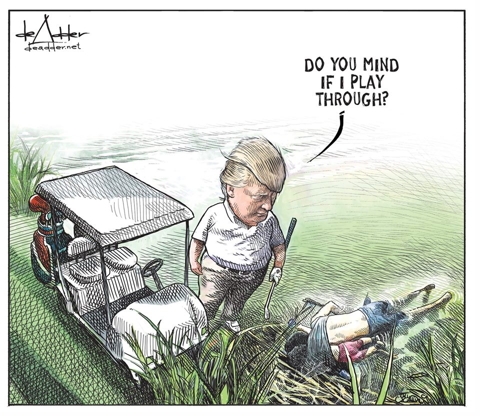 IMAGE(https://i1.wp.com/www.dailycartoonist.com/wp-content/uploads/2019/06/de-adder-play-through.jpg)