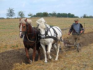 Farmer plowing in Fahrenwalde, Mecklenburg-Vor...