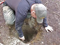 Dan Digging