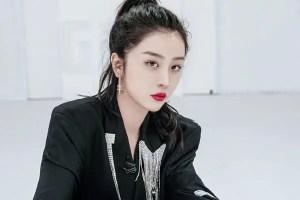 IMG_1309 Zhao Xiaotang profile