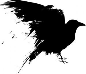 crow1.jpg