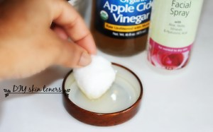 4 DIY Skin toners you need to try / 4 toners naturales que debes tratar.