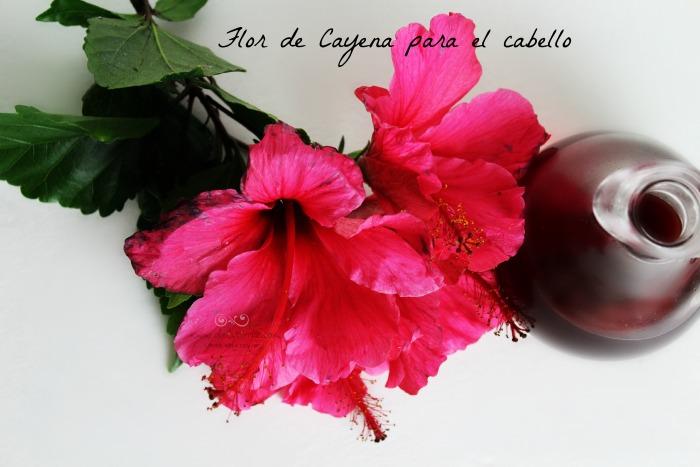 flor de Cayena para el cabello