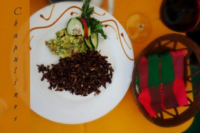 chapulines dish