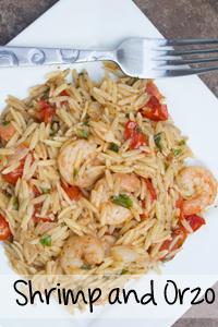 Shrimp-and-Orzo
