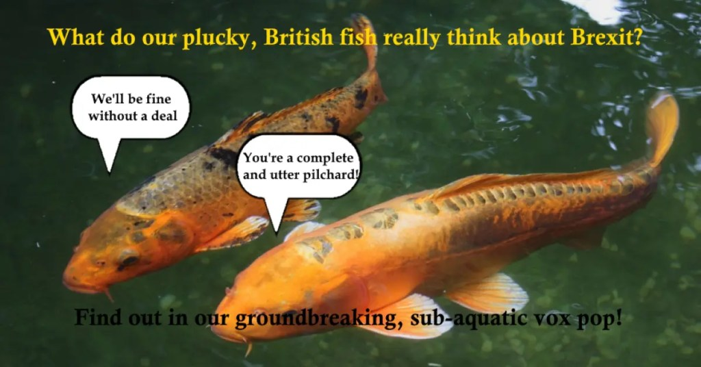 british fish brexit vox pop daily distress satire